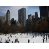 50 X 50 Ice Rink Liner Tarp